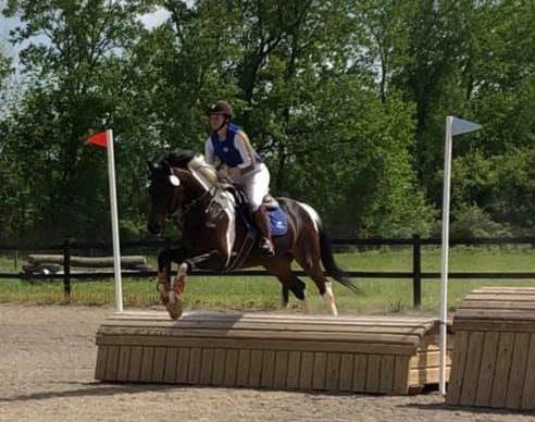 Omni Equine